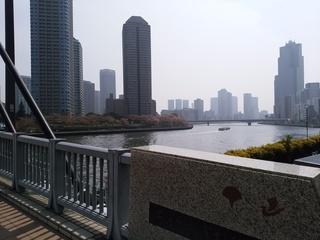 11 橋の上から.jpg