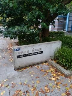 14 桜川公園.jpg