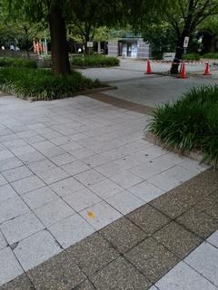 15 桜川公園.jpg