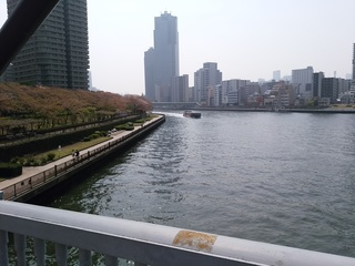 15残桜2.jpg
