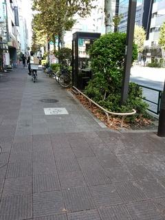 2 新大橋通り.jpg