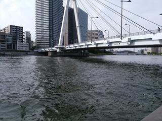 37 橋遠景.jpg
