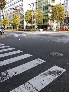 4 さくら通り交差点.jpg