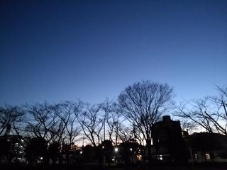 4 新年夕暮れ.jpg