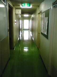5 H20.2.14 2F廊下.JPG