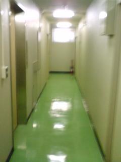 6 H20.2.14 3F廊下.JPG