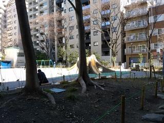 7 公園.jpg