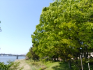 9 散歩.jpg