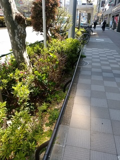 9 新大橋通り.jpg