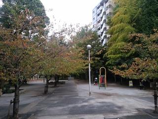 9桜川公園様子.jpg