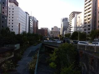 9橋の上から銀座ブロッサム.jpg