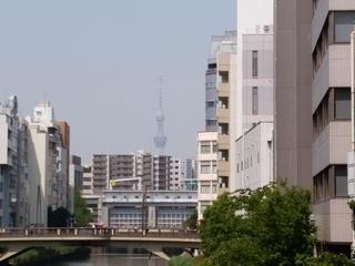 亀島橋からスカイツリー.jpg